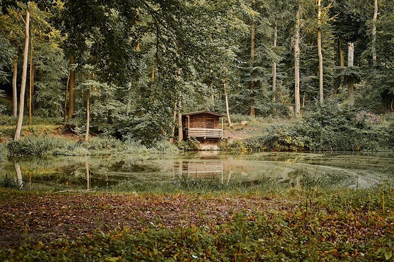 2Gut Ostenwalde-Lichtgestalt by Schreer 49